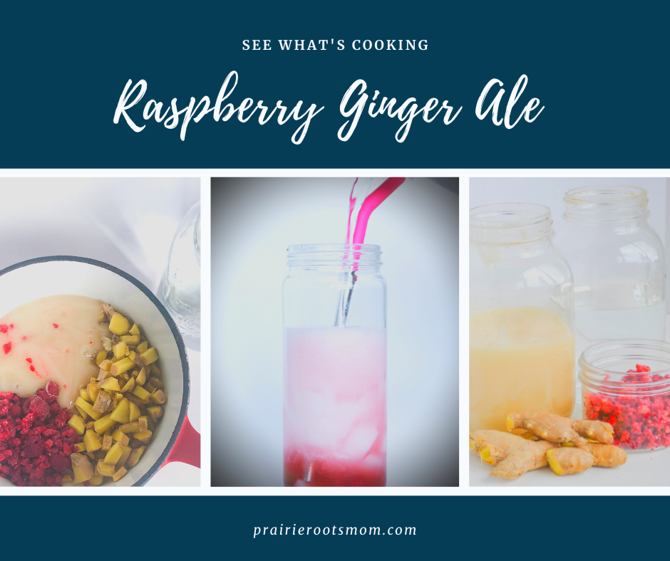 Refreshing Sparkling Ginger Ale with A Berry Twist